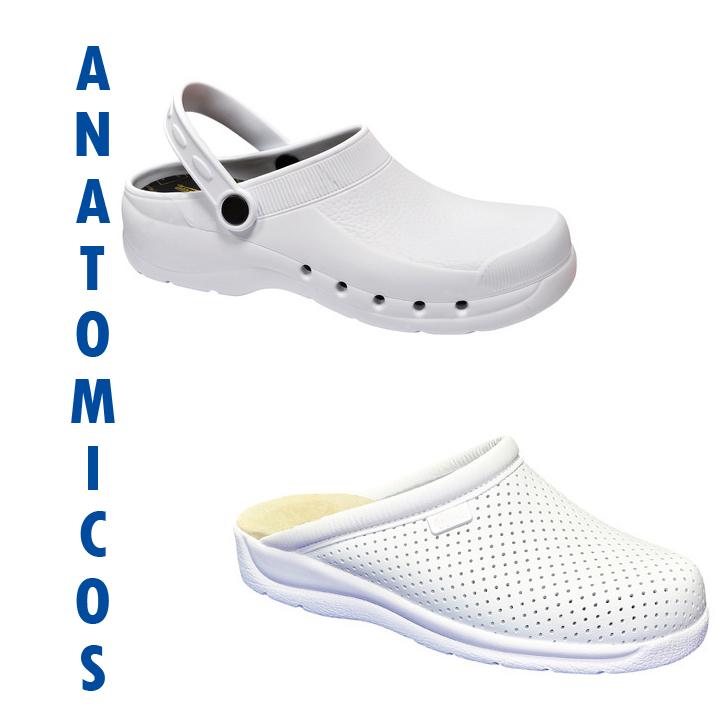 Anatomicos